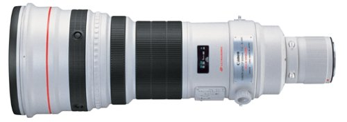 Best Canon Lens for Bird Photography