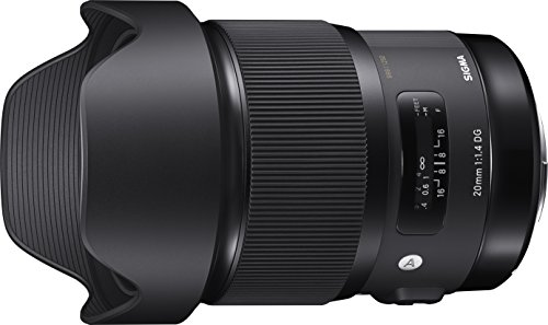 Best Canon Lens for Astrophotography
