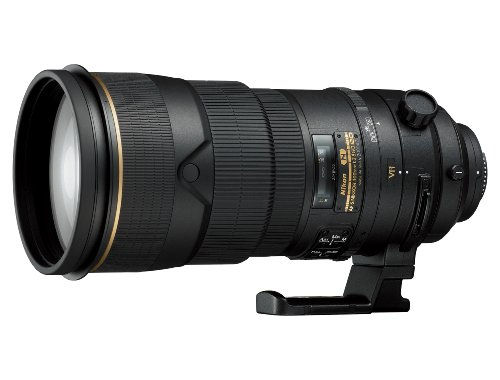 Best Nikon Lens for Wildlife Photography