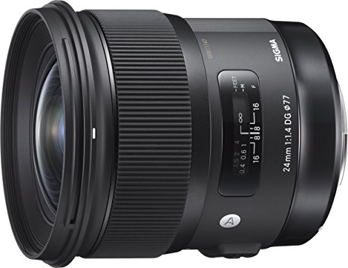 Best Sigma Lens for Newborn Photography