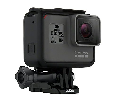 Best Cameras For Underwater Phot