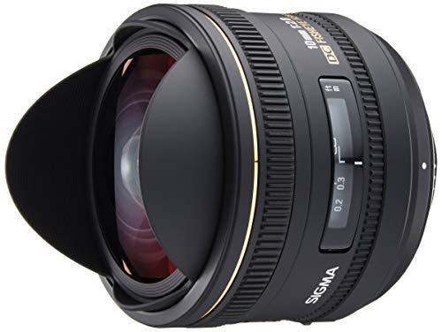 Best Lenses for Nikon D3100
