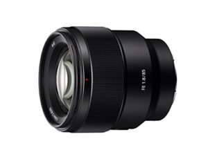 Best Sony Lens for Portrait Photography