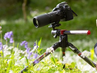 Best Tripods for Macro Photography