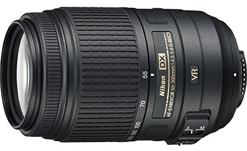 Best Lenses for Nikon D7000