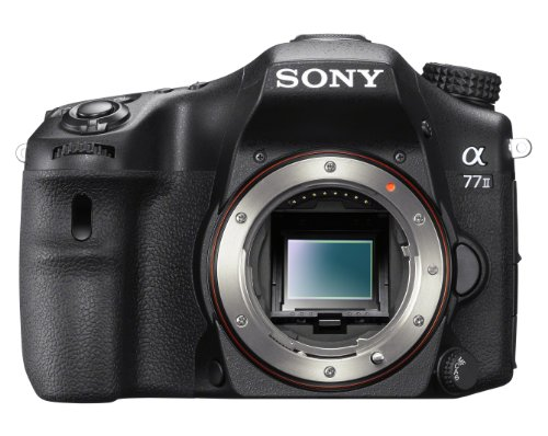 Best Cameras for Family Photography