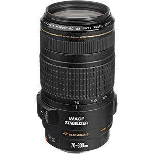 Best Lenses for Canon 200d