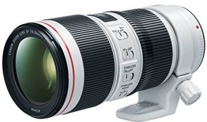 Best Lens for Concert Photography