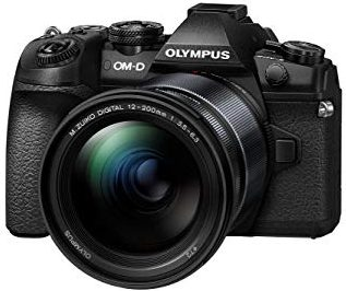 Best Weather-Sealed Olympus Mirrorless Camera